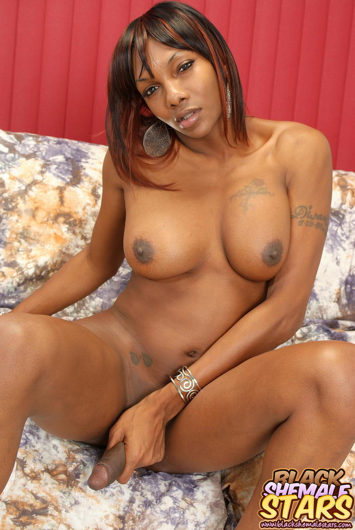 Ebony shemale cum